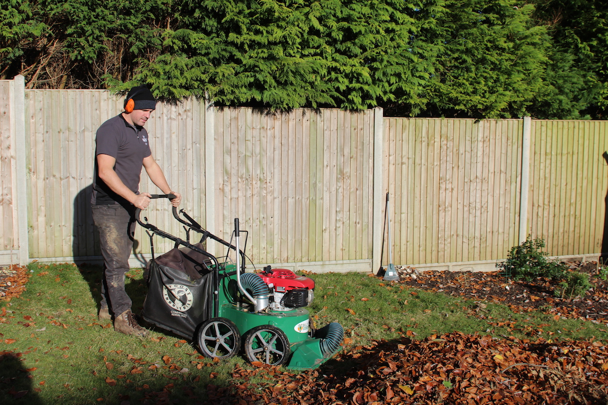 Autumn leaf removal